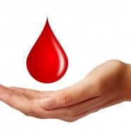 Наличие крови на унитазе должно насторожить