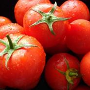 Томаты являются очень полезным овощем