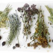 Народная медицина предлагает много эффективных рецептов для здоровья