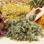 В народной медицине активно используют лечебные сборы трав