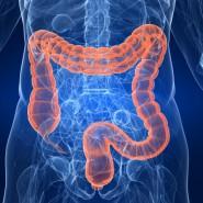 За здоровьем кишечника следует внимательно следить