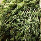 Народная медицина активно использует сборы лекарственных растений