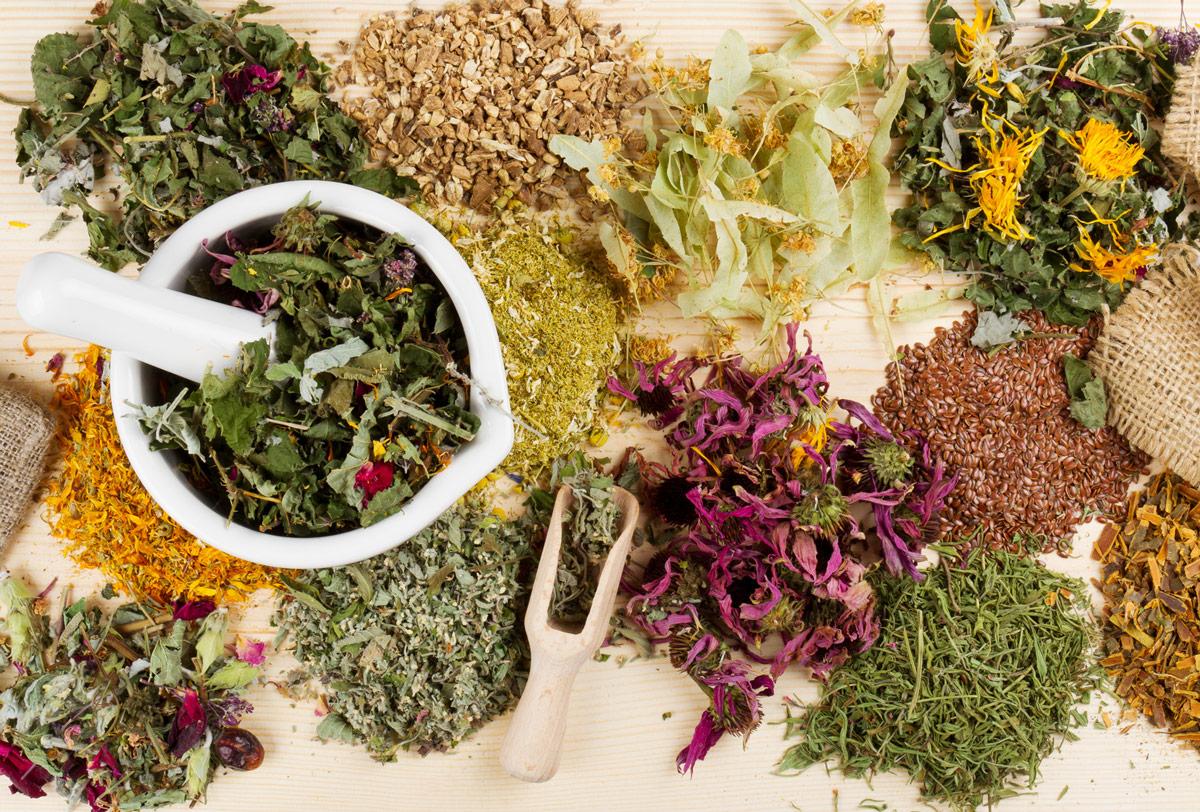 Лечебные травы при заболевании