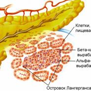 podzheludochnaya zheleza simptomy zabolevaniya lechenie medikamentami
